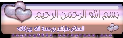 http://toqtoq2000.files.wordpress.com/2009/04/1.png